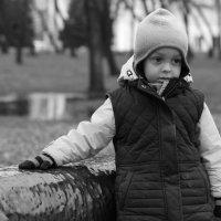 Сева и такса :: Дмитрий Арсеньев