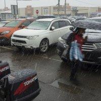 апрельский снегопад :: Владимир