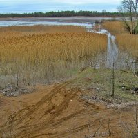 Разлив на реке Самара :: Александр Алексеев
