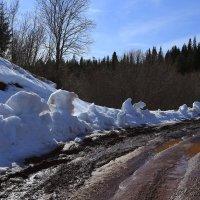 Последние страшилки зимы. :: Galina S*