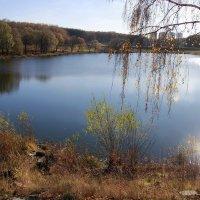 Последний теплый осенний день 2015 :: Инна Щелокова
