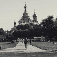 Про город на Неве. :: Анатолий Щербак