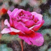 Розовая память.... :: Tatiana Markova