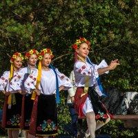 В ритмах танца. :: Владимир Батурин