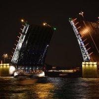 Развод моста :: Андрей + Ирина Степановы