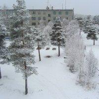 А у нас зима вернулась... :: Галина Полина