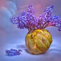 мускари в вазе из декоративной тыквы :: Olena