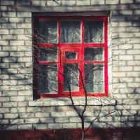 красное окно :: Карина Чечель