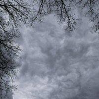 Обрамляя небеса :: Денис Гладких