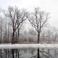 Зимнее :: Sasha Bobkov