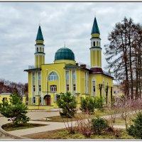 Мечеть в Костроме. :: Олег