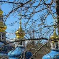 Золото на голубом :: Сергей Залаутдинов