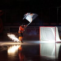 Большой хоккей :: Андрей Горячев