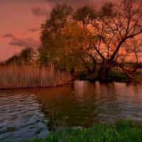 Апрельский закат... :: евгения