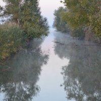 На рыбалке. :: Береславская Елена