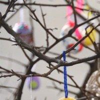 Пасхальное дерево :: Наталия Григорьева