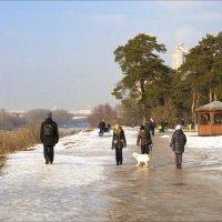 Высокий берег Москва-реки :: Александр Лебедевъ