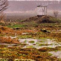 домик для электричества :: gegemoon
