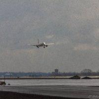 Пулковские зарисовки. Сажать самолет в град сложно, фотографировать-тоже. :: Валерий Смирнов