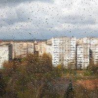 После дождя... :: Александр Манько