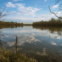 В реку смотрятся облака. :: cfysx