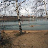 Апрель в моём городе... :: Александр Попов