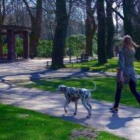 Девушка с собакой и велосипедист :: Nina Yudicheva