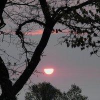 Весенний рассвет. :: Татьяна и Александр Акатов