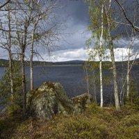 весна :: liudmila drake