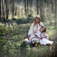Утро в Сибирском  лесу. :: Марина Кузьмина