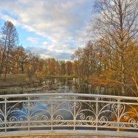 вид с мостика в парке :: Елена
