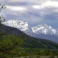Весна в горах :: Ви Ви