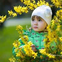 Весна :: Елизавета Тимохина