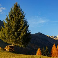 Verso Passo Giao - Selva di Cadore :: Юрий Куко'