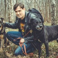 все псы попадают в рай :: Viktor Marvel