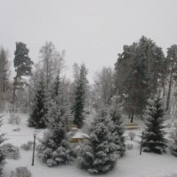 Зимний пейзаж.. :: Valentina