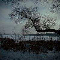 OTHER_PHOTO (26.04.16) :: Артем Плескацевич