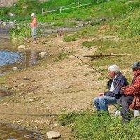Ловись рыбка золотая. :: Paparazzi