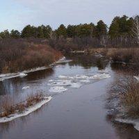 На реке :: IURII