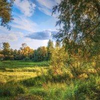 Осень. Вечер неподалёку от реки. :: Vadim Piottukh