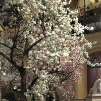Весна в ГУМе. :: Larisa