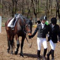 Верховая езда :: Natalia Babukh