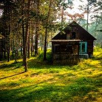 Сказочный лесной домик :: Сергей Алексеев