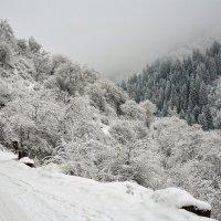 зима в горах :: Горный турист Иван Иванов