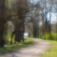 В парке весна 2 :: Виталий