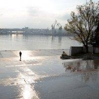 Дождь в Севастополе :: Ольга Голубева