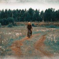 Велопрогулки :: סּﮗRuslan HAIBIKE Sevastyanovסּﮗסּ