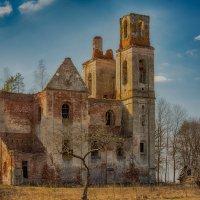 Руины костела святой Вероники в д. Селище :: Лариса Кайченкова