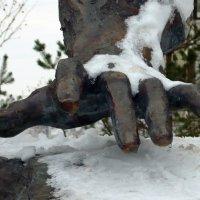 Рука композитора :: Вера Щукина