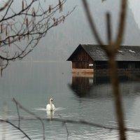 Ловите мгновения тишины и покоя... :: Elena Danek